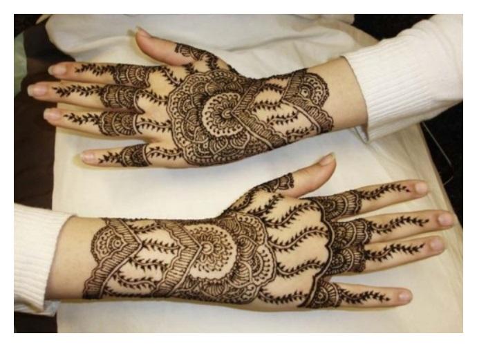 indian pakistani traditional mehndi design