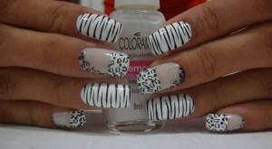 Perfect Zebra Nail Art