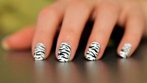 Top Class Zebra Style