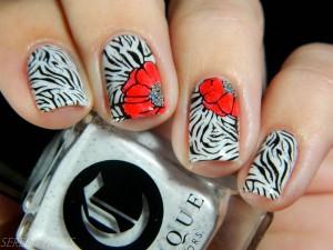 Zebra Nail Prints